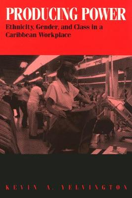 Producing Power: Ethnicity, Gender, and Class in a Caribbean Workplace (Paperback)