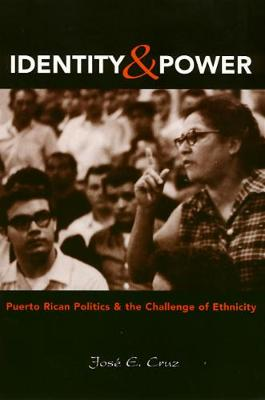 Identity and Power: Puerto Rican Politics and the Challenge of Ethnicity (Paperback)
