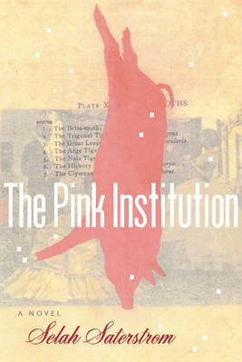 The Pink Institution (Paperback)