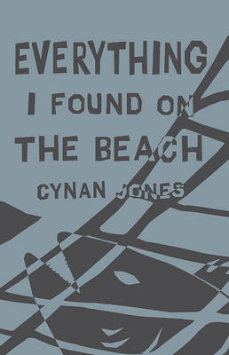 Everything I Found on the Beach (Paperback)