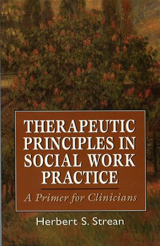 Therapeutic Principles in Social Work Practice: A Primer for Clinicians (Paperback)
