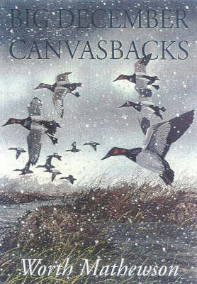 Big December Canvasbacks (Paperback)