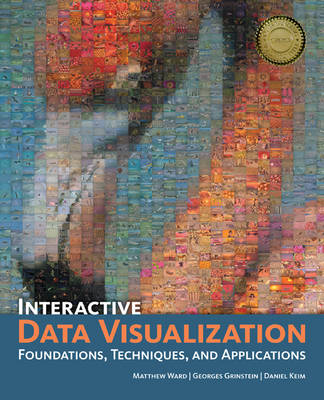 Interactive Data Visualization: Foundations, Techniques, and Applications - 360 Degree Business (Hardback)