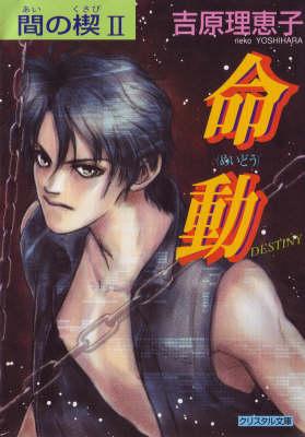 Ai No Kusabi The Space Between Volume 2: Destiny (Yaoi Novel) (Paperback)