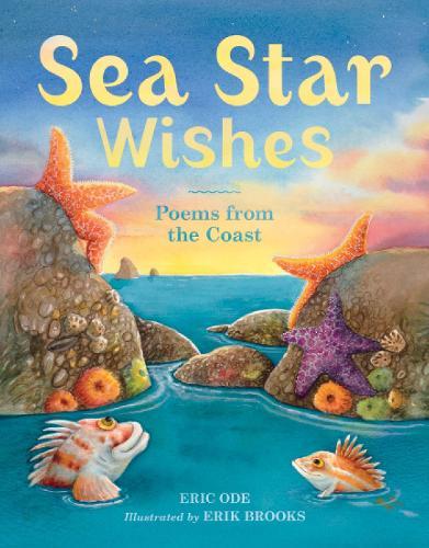 Sea Star Wishes (Hardback)