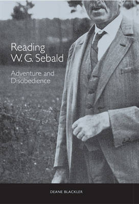 Reading W. G. Sebald: Adventure and Disobedience - Studies in German Literature, Linguistics, and Culture v. 10 (Hardback)