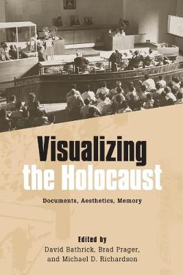 Visualizing the Holocaust: Documents, Aesthetics, Memory - Screen Cultures: German Film and the Visual (Paperback)