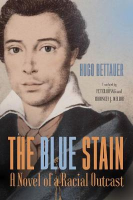 The Blue Stain: A Novel of a Racial Outcast - Studies in German Literature, Linguistics, and Culture v. 178 (Hardback)