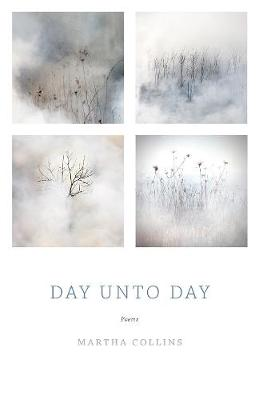 Day Unto Day: Poems (Paperback)