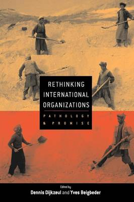 Rethinking International Organizations: Pathology and Promise (Paperback)