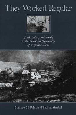 They Worked Regular: Craft, Labor, and Family in the Industrial Community of Virginius Island (Hardback)