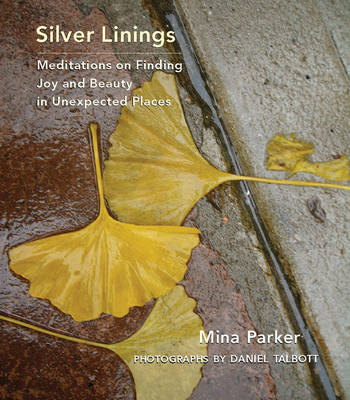 Silver Linings: Meditations on Finding Joy and Beauty in Unexpected Places (Hardback)