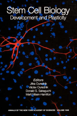 Stem Cell Biology: Development and Plasticity - Annals of the New York Academy of Sciences v. 1049 (Paperback)