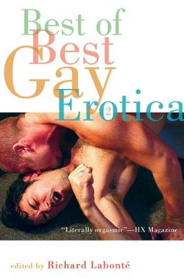 Best of Best Gay Erotica 2 (Paperback)