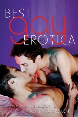 Best Gay Erotica 2009 (Paperback)
