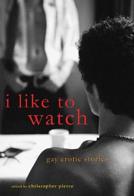 I Like to Watch: Gay Erotic Stories (Paperback)