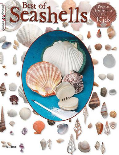Best Book Of Seashells (Paperback)