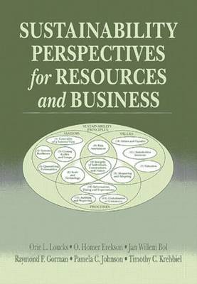 Sustainability Perspectives for Resources and Business (Paperback)
