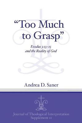 """""""Too Much to Grasp"""": Exodus 3:13-15 and the Reality of God - Journal of Theological Interpretation Supplements (Paperback)"""