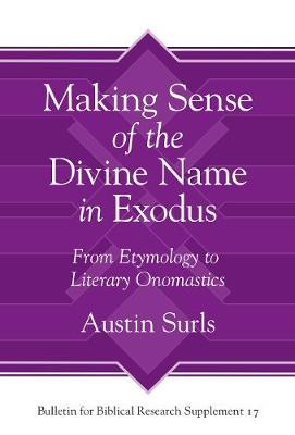 Making Sense of the Divine Name in the Book of Exodus: From Etymology to Literary Onomastics (Hardback)