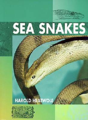 Sea Snakes (Hardback)