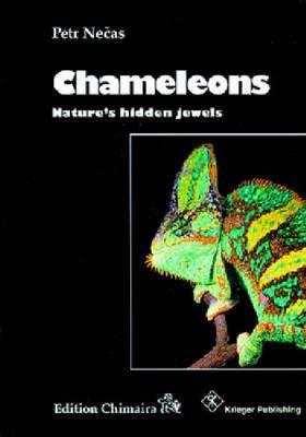 Chameleons: Nature's Hidden Jewels (Hardback)