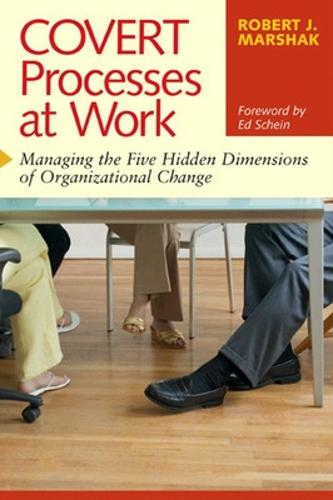 Covert Processes at Work: Managing the Hidden Dimensions of Organizational Change: Managing the Hidden Dimensions of Organisational Change (Paperback)