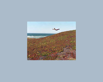 Flying Pictures (Hardback)