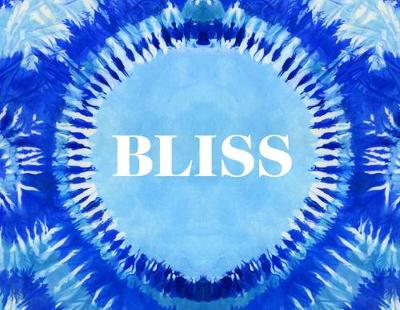 Bliss: An Exploration of the Current Hippie Counterculture & Transformational Festivals (Hardback)