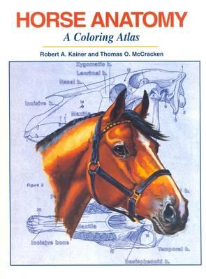 Horse Anatomy: A Coloring Atlas (Spiral bound)