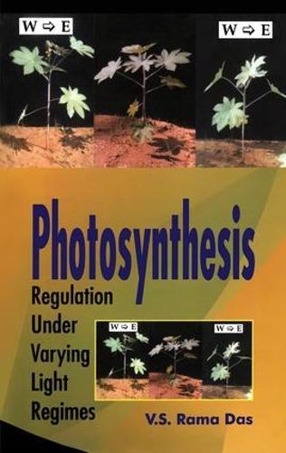 Photosynthesis: Regulation Under Varying Light Regimes (Hardback)
