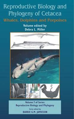Reproductive Biology and Phylogeny of Cetacea: Whales, Porpoises and Dolphins - Reproductive Biology and Phylogeny (Hardback)
