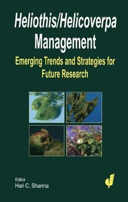 Heliothis/ Helicoverpa Management: The Emerging Trends and Need for Future Research (Hardback)