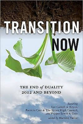 Transition Now: Redefining Duality, 2012 and Beyond (Paperback)
