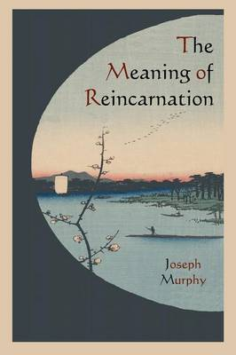 The Meaning of Reincarnation (Paperback)
