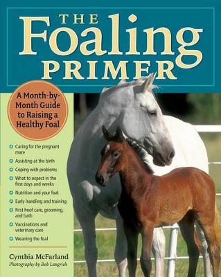 Foaling Primer (Paperback)