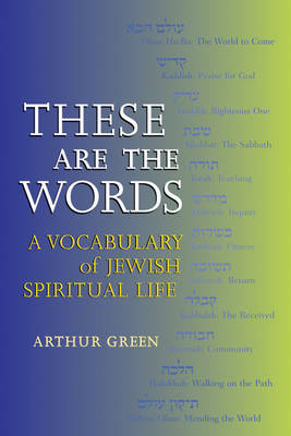 These are the Words: A Vocabulary of Jewish Spiritual Life (Paperback)