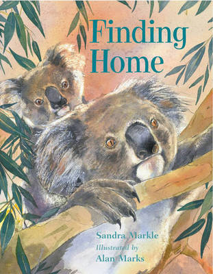 Finding Home (Paperback)