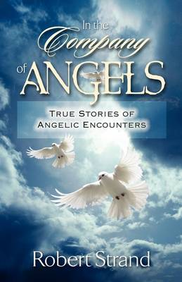 In the Company of Angels (Paperback)