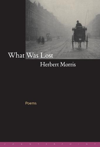 What Was Lost: Poems (Hardback)