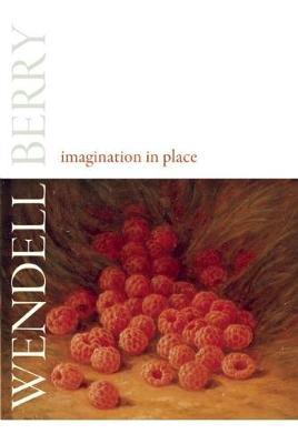 Imagination in Place (Hardback)