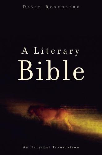 A Literary Bible: An Original Translation (Paperback)