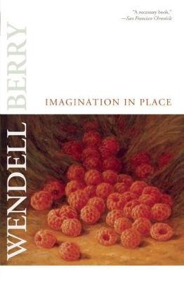 Imagination in Place (Paperback)