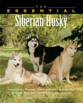The Essential Siberian Husky - Essential Guide S. (Paperback)