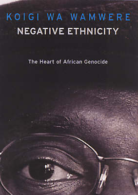 Negative Ethnicity: From Bias to Genocide (Paperback)