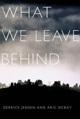 What We Leave Behind (Paperback)