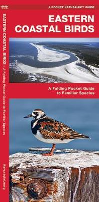 Eastern Coastal Birds: A Folding Pocket Guide to Familiar Species - Pocket Naturalist Guide Series