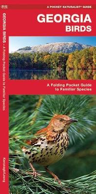 Georgia Birds: A Folding Pocket Guide to Familiar Species - Pocket Naturalist Guide Series
