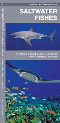 Saltwater Fishes: A Folding Pocket Guide to Familiar North American Species - Pocket Naturalist Guide Series