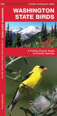 Washington State Birds: A Folding Pocket Guide to Familiar Species - Pocket Naturalist Guide Series